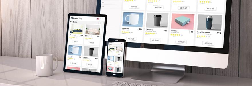 Logiciel de gestion pour votre site e-commerce